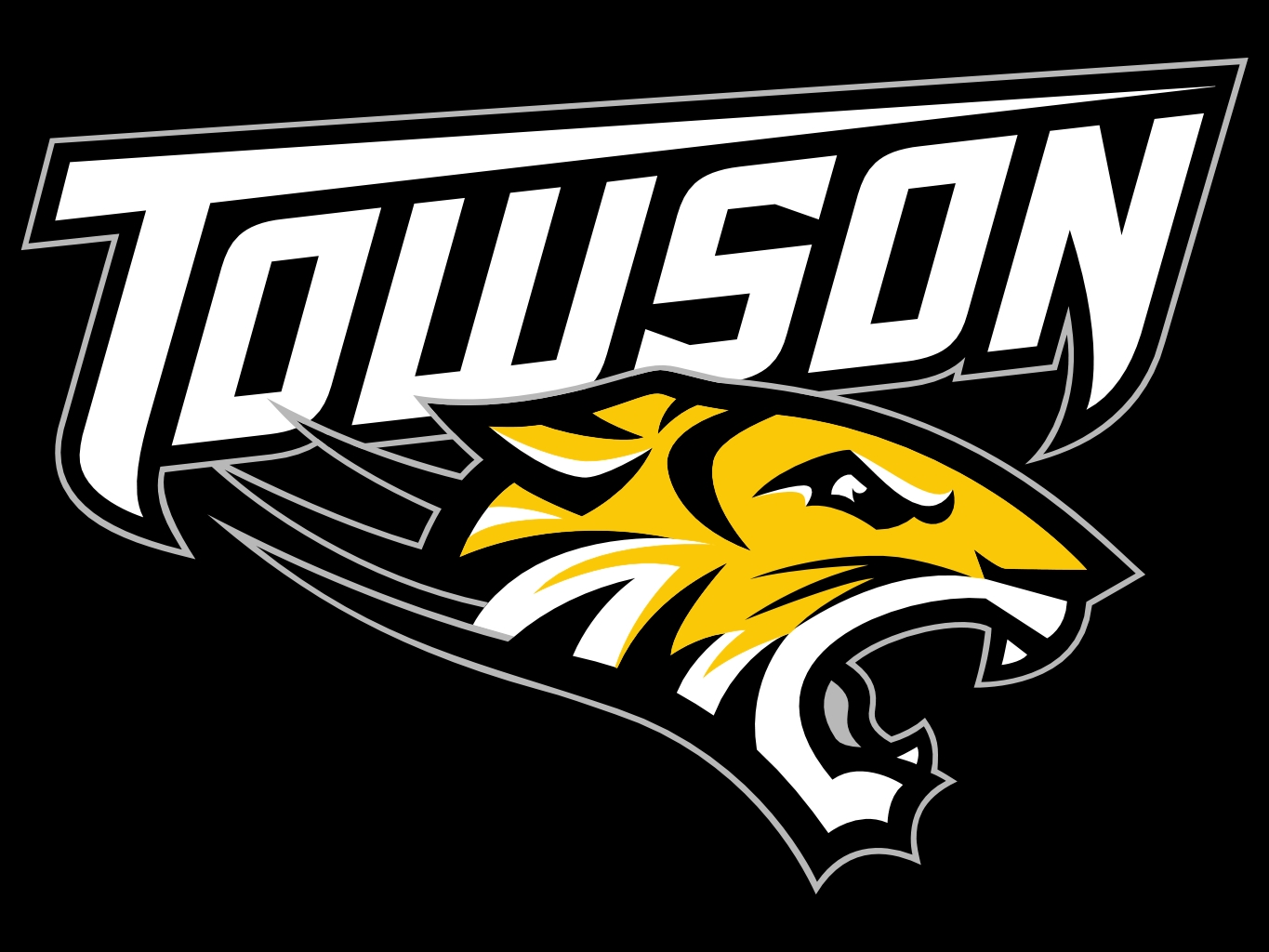 Towson_Tigers03